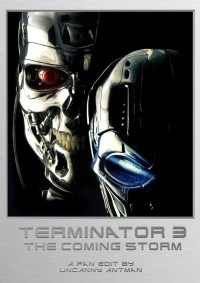 Terminator 3: The Coming Storm